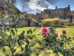 wedding venues devon bickleigh castle roses.jpg