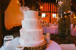 wedding photographers devon wedding cake.jpg