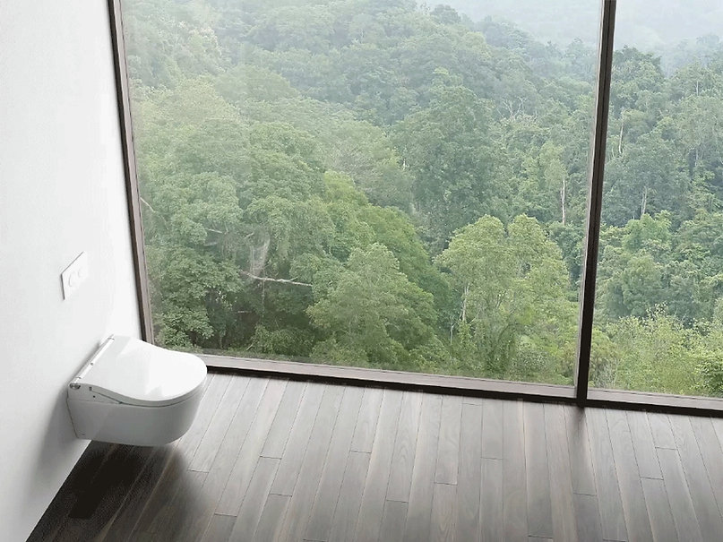 TOTO Washlet Shower Toilet