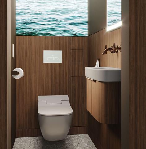 Small Size Premium Spa Apartment Toilet