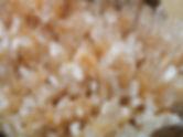 Hedgehog Quartz - Madagascar