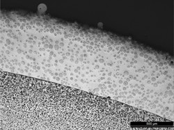 Laser Clad Microstructure