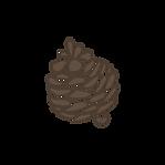 Pomme de pin 3
