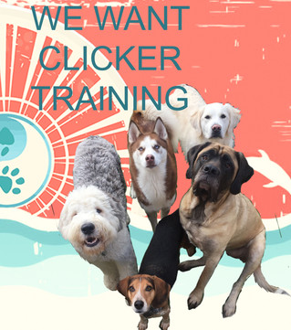 Clicker Training May Be Easier than you Think