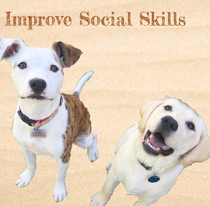 Improve Social Skills