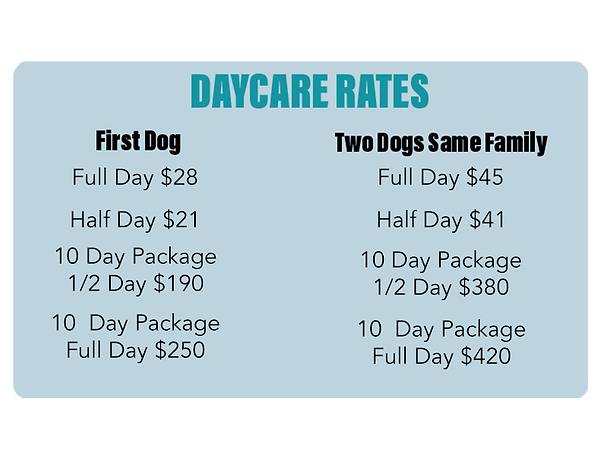 Updated Doggy Dayycare Menu 2021.png