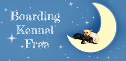 Boarding Kennel Free