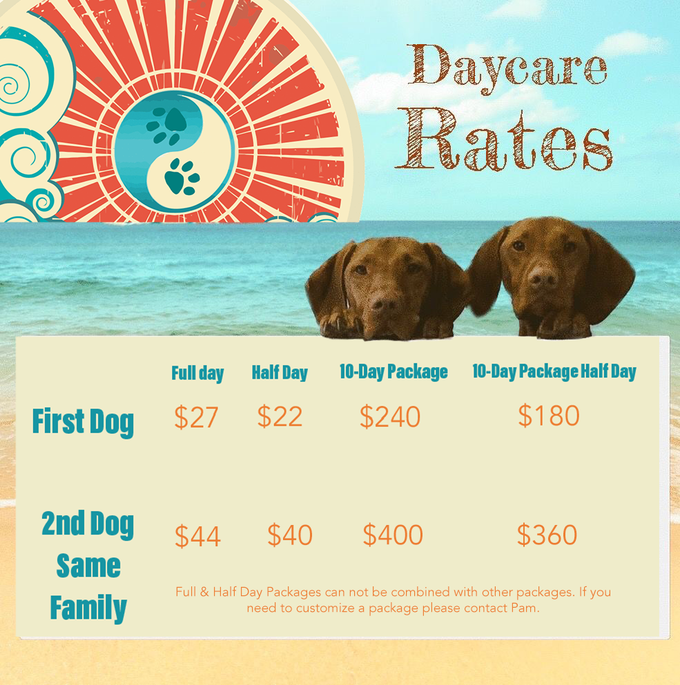Daycare Rates Homepage Banner