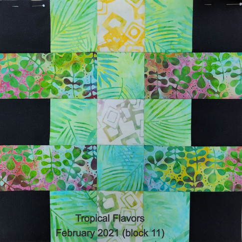 Tropical Flavors - February 2021 (block 11)