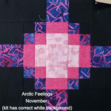 Arctic Feelings - November
