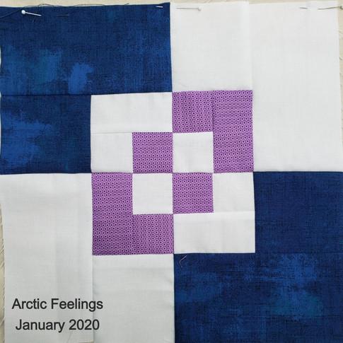 Arctic Feelings - January 2020