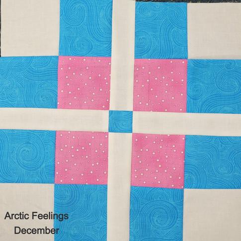 Arctic Feelings - December