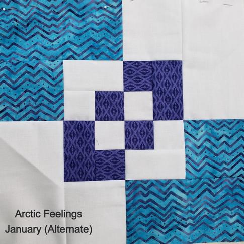 Arctic Feelings - January (Alternate)