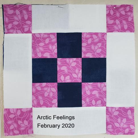Arctic Feelings - February 2020
