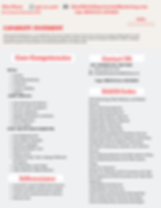 Capability statementweb.png
