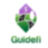 Large  Guidefi Logo.png