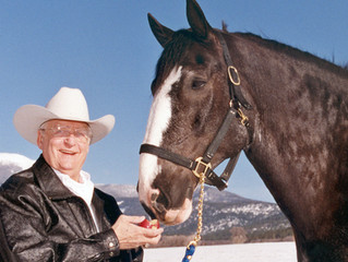 Bob Funk: Why I love Clydesdales.
