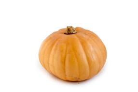 Fai scorta di questi alimenti per l'autunno