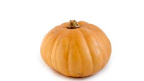 1ヶ月限定!「かぼちゃ」