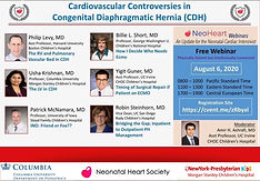 Cardiovascular Controversies in Congenital Diaphragmatic Hernia (CDH)