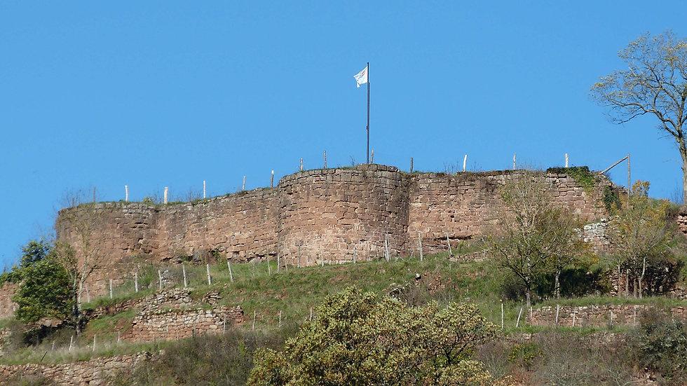 Chateau de Baucaire (Nauviale12) 19.jpg
