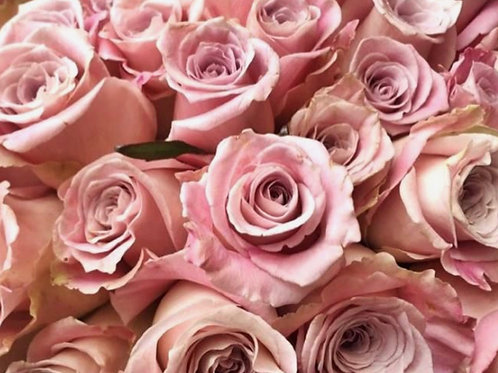 """""""Faythe"""" 6 stems Light Pink Roses in Clear Vase"""