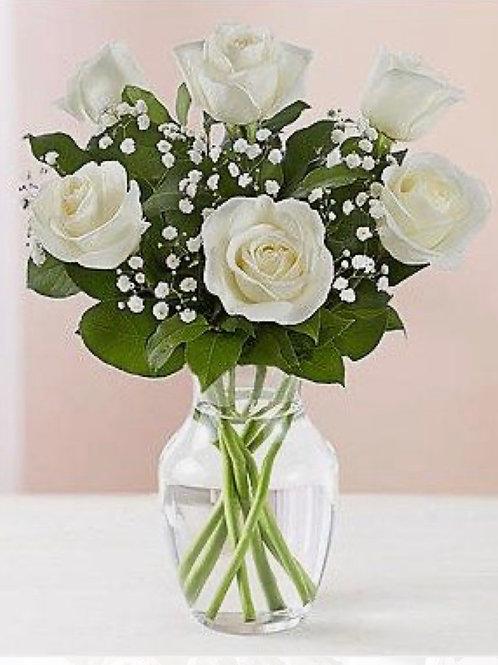 """Akito"" White Rose Six stems"