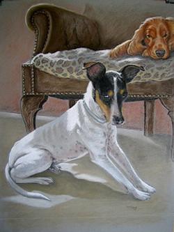 Jack & Spaniel in Pastel -1