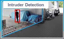 RFNet Intruder Detection