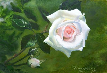 акварель, акварельная техника, живопись акварелью, цветы