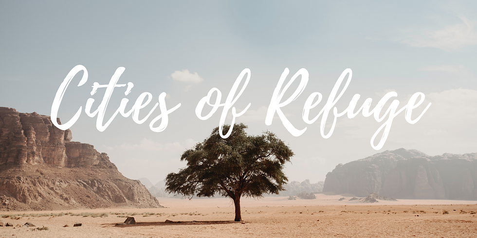 Cities of Refuge // Terry Wong
