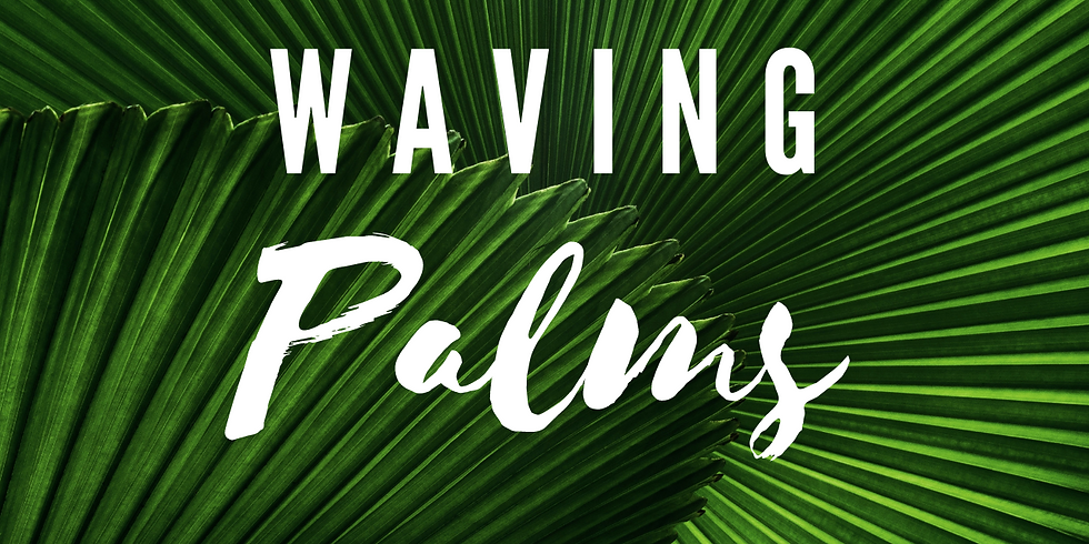 Waving Palms // Terry Wong