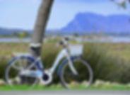 foto bici tavolara1200x840.jpg