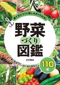 yasaizukan.jpg