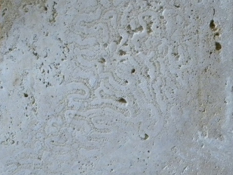 Sealer for Coral Stone application