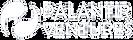 palantir-ventures-logo.png