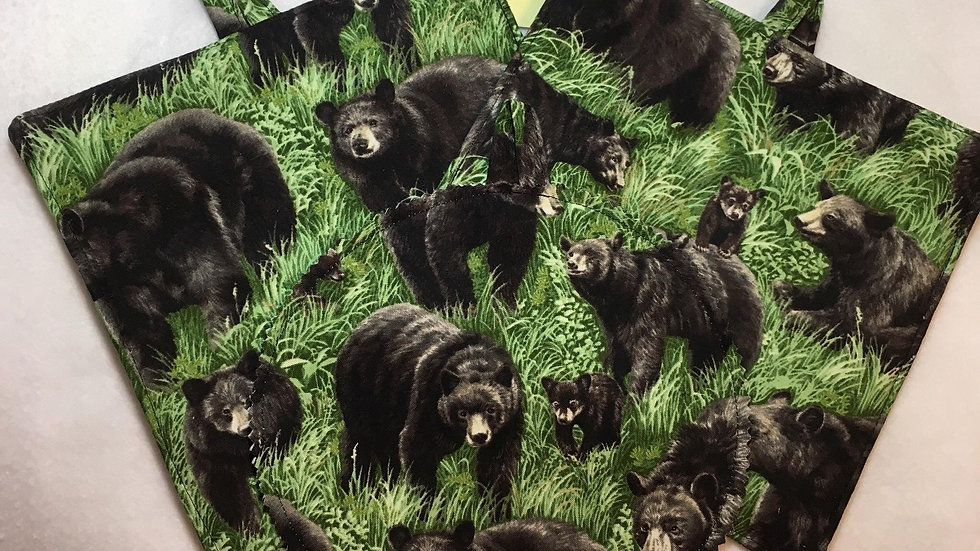 Black Bear Set