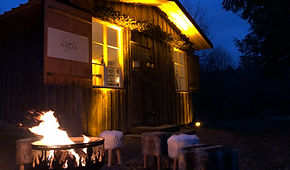 Hütte Naturpur Baden-Baden Wald