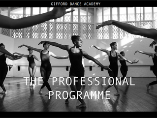 Introducing The Professional Programme