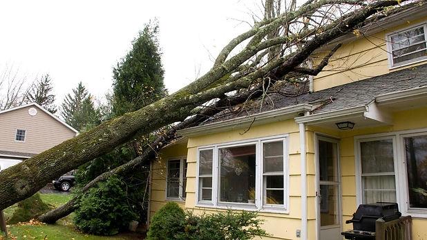 property damage.jpg
