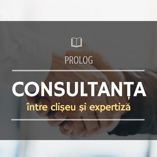 Consultanța - între clișeu și expertiză