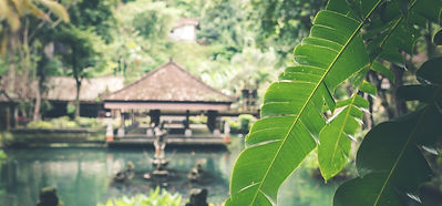 A lush green peaceful temple where you can meditate in Bali, Indonesia.