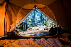 Camping in a tent in the mountains in a pine forest