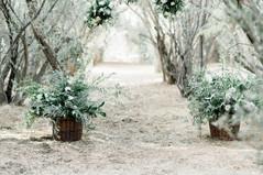 Ceremony decor in olive grove