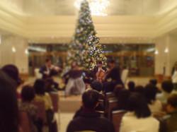 生演奏,ホテル,ロビー,演奏依頼,クリスマス演奏,結婚式,甲府,山梨
