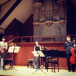 演奏依頼,生演奏,ピアノ三重奏,アンサンブル,弦楽器,甲府,山梨,東京