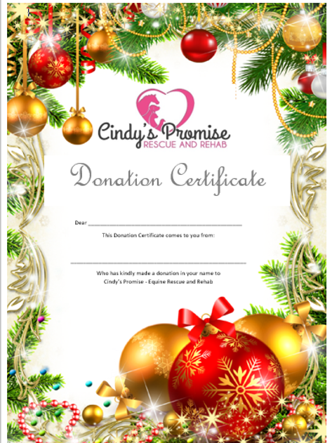 Christmas Donation Certificate