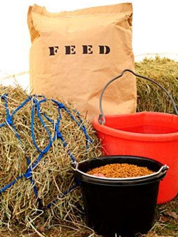 Buy a Bag of Feed