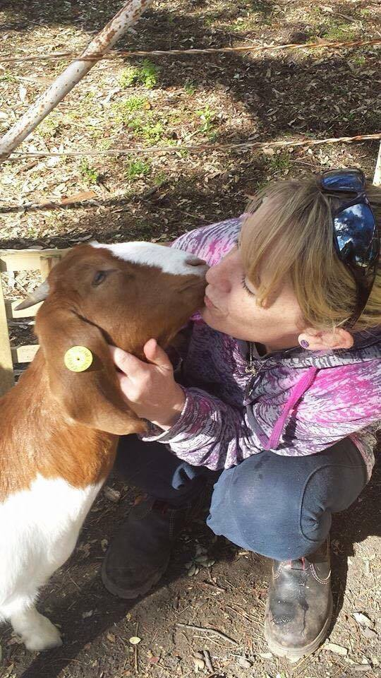 Goat kisses