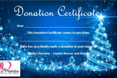Blue Christmas Donation Certificate